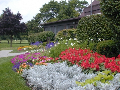 conway park flowers 2004 002