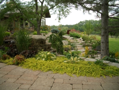 residential_landscaping_5